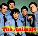 Animals Audio